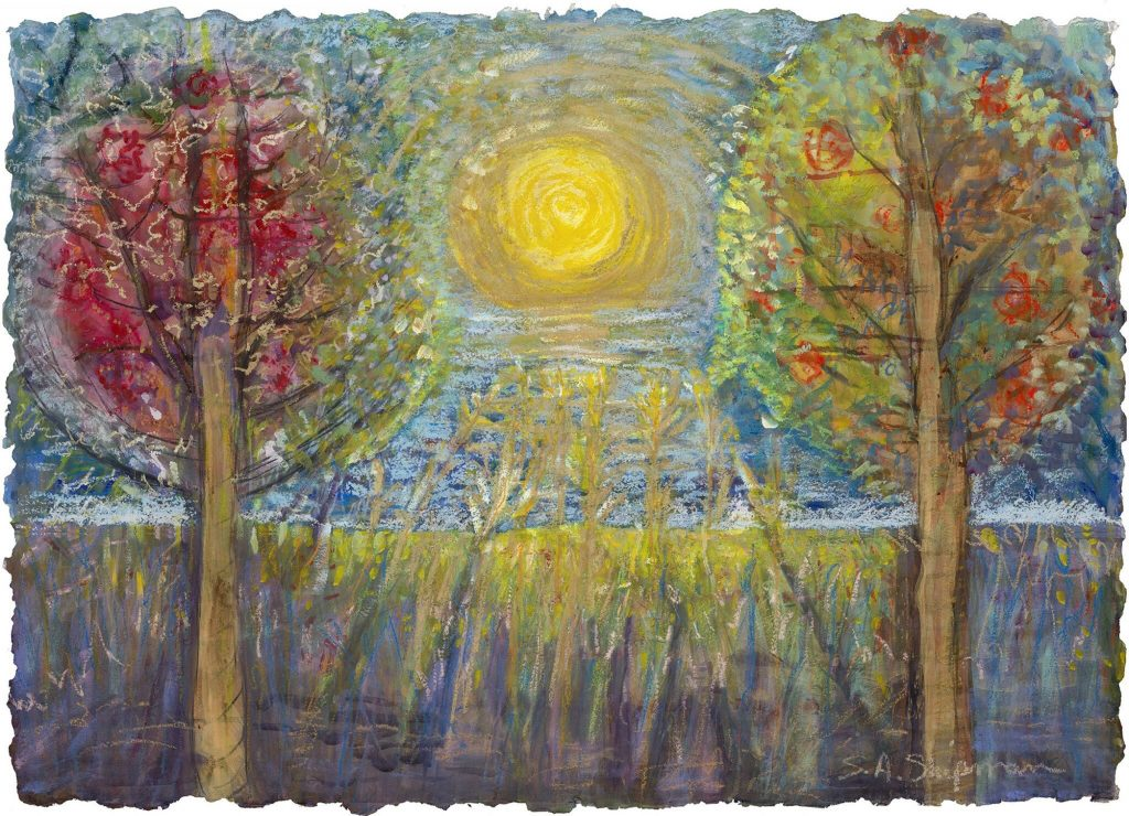 Susan Shipman naples fl artist